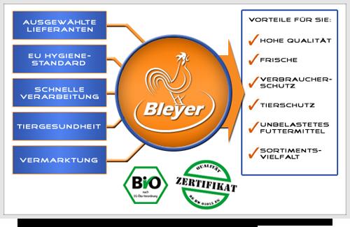 Bleyer Grafik